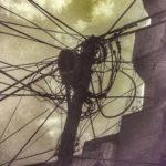 La calurosa soledad de los impulsos eléctricos