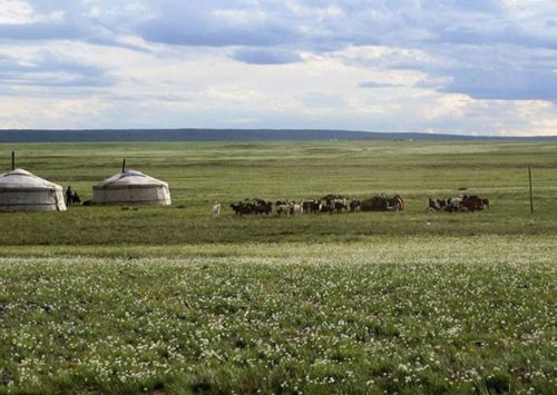 Mongolia: los últimos nómadas