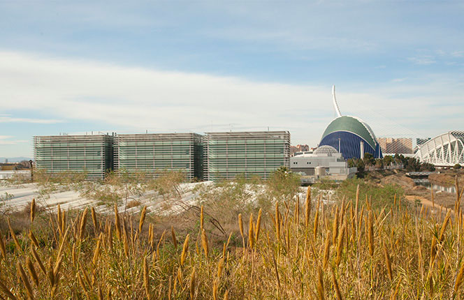 Las espinas o lamas de la cubierta móvil del Ágora permanecen inútiles en sus inmediaciones. Foto: Juanjo Hernández