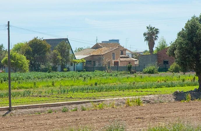 Barraca y caserío al sur de la calle Antonio Ferrandis. Foto: Juanjo Hernández