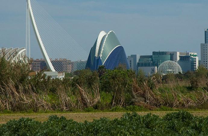 La Ciudad de las Artes vista desde la Huerta Sur de Valencia. Foto: Juanjo Hernández