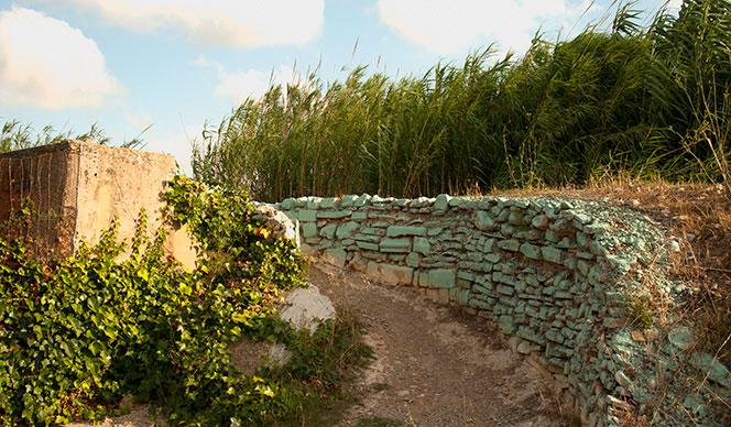 Camino descendente al viejo cauce del Turia, antes de llegar al nuevo. Foto Juanjo Hernández