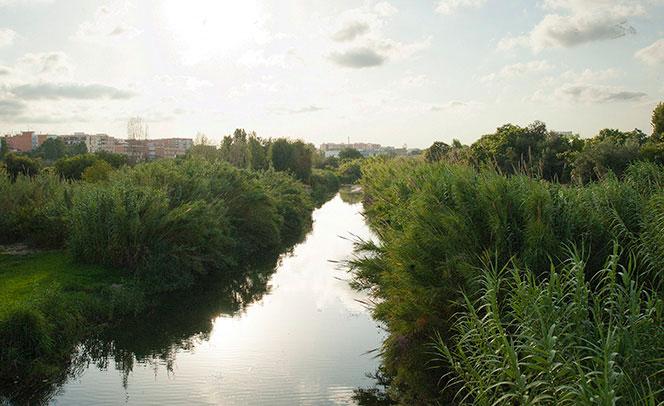 Agua del río Turia en el nuevo cauce vista desde el puente de Quart. Foto: Juanjo Hernández