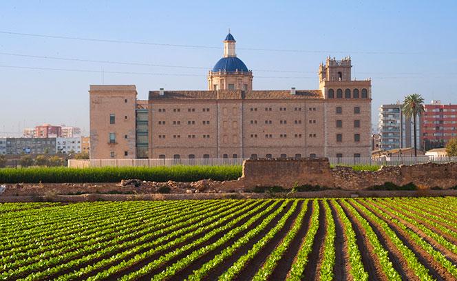 Vista septentrional del Monasterio de San Miguel de Los Reyes, con el muro de huerta en primer plano.Foto: Juanjo Hernández