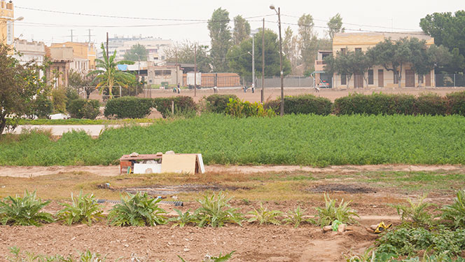 Resto de huerta en la entrada de La Punta. Foto: Juanjo Hernández