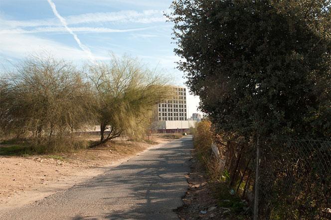 Camino abierto entre huertos urbanos y solares vacíos en Benimàmet. Foto: Juanjo Hernández