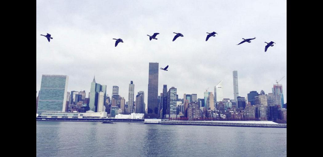 6 propósitos para Nueva York en 2016
