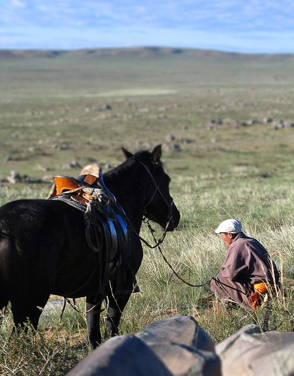 Jinete mongol © Nacho Carbó