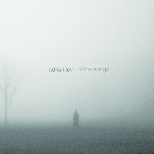 Under songs (Adrián Levi)