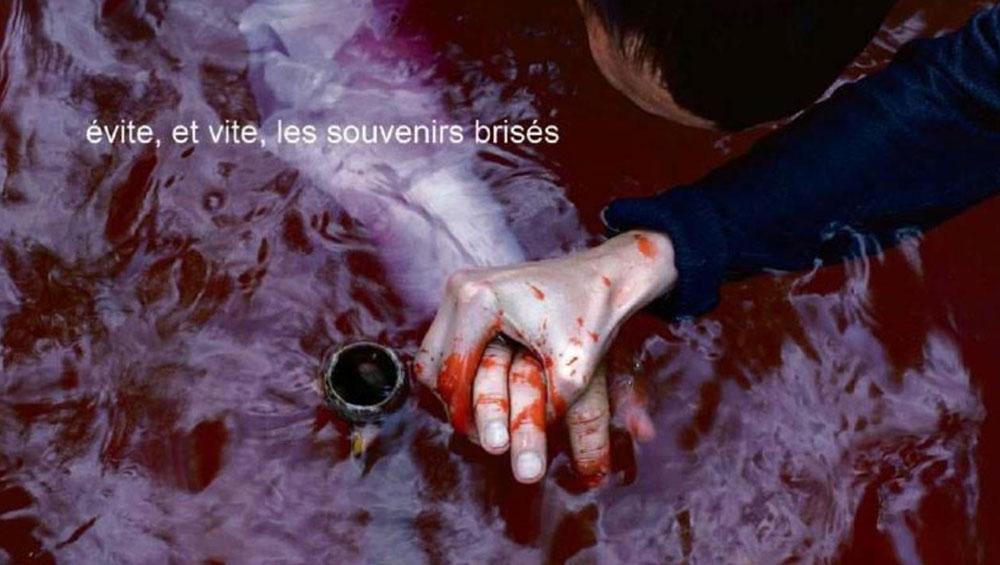 Adieu au langage (Jean-Luc Godard, 2014)