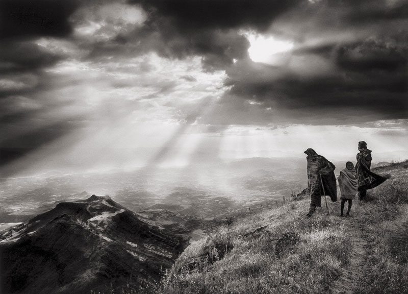 La sal de la Tierra (2014, Wim Wenders)