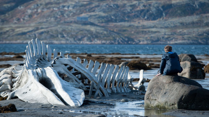 Leviathan (2014, Andrei Zvyagintsev)