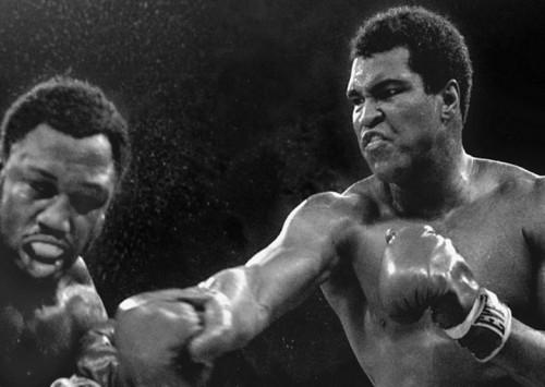 ¡Ali, mátale!