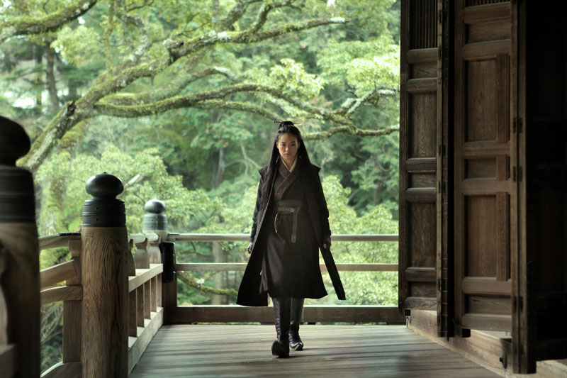 The Assassin. Hou Hsiao-Hsien