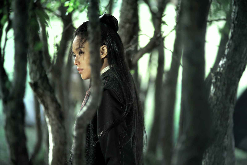 The Assassin (2015, Hou Hsiao-Hsien)