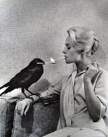 """Fue por Daphne y no por Tippi Hedren: """"Las pájaras"""""""