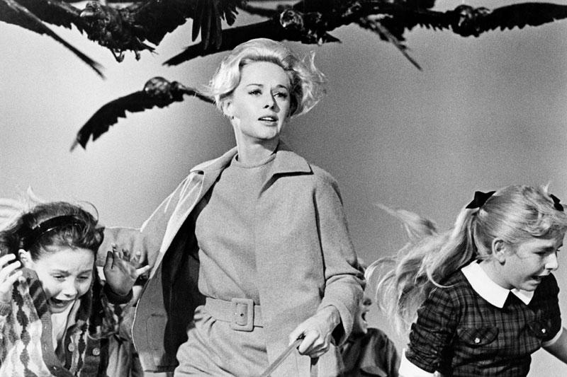 El motivo de la huida de Tippi Hedren en Los pájaros permitía varias lecturas. También una en clave psicoanalítica... y Hitchcock lo sabía.