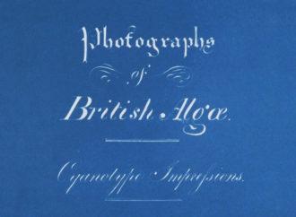 Anna Atkins y el azul Prusia