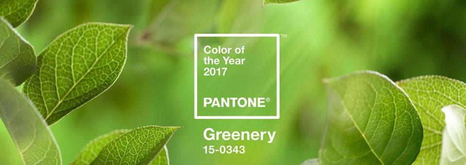 2017 se pone verde