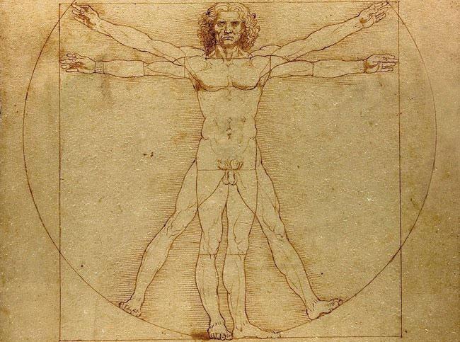 El hombre de vitruvio. Leonardo da Vinci