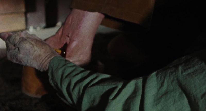 The Evil Dead (Sam Raimi, 1981)