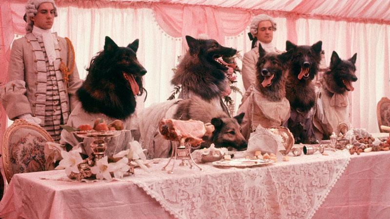 En compañía de lobos (Neil Jordan, 1984)