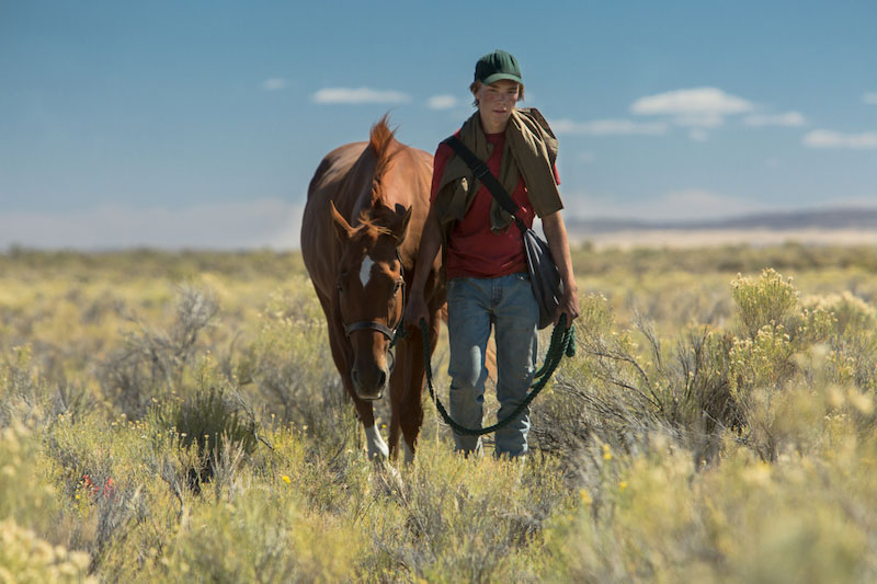 Lean on Pete (Andrew Haigh, 2017)