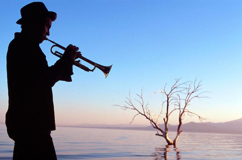 The Salton Sea (D.J. Caruso, 2002)