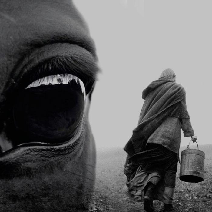 El caballo de Turín (Béla Tarr, Ágnes Hranitzky, 2011)