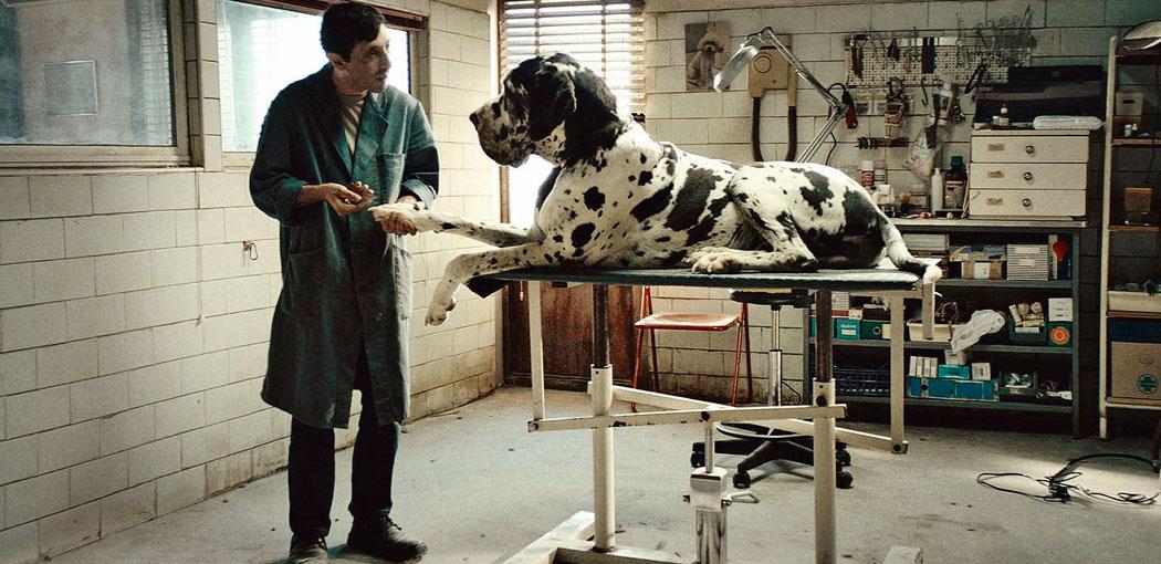 Dogman (Matteo Garrone, 2018)