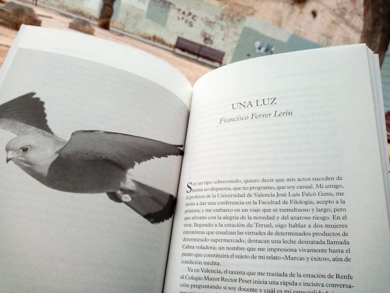 """Una luz"", Francisco Ferer Lerín"