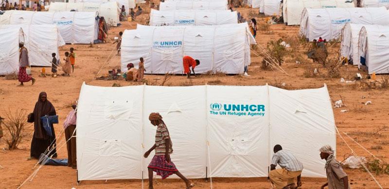 Refugiados UNHCR