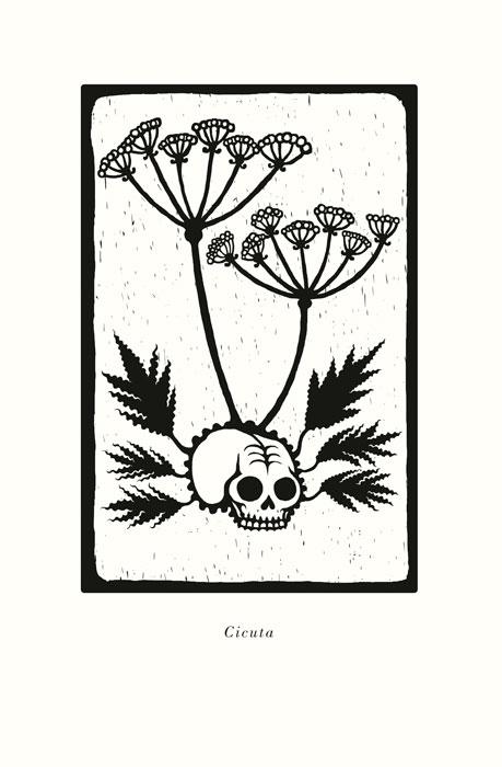 """""""La coronación de las plantas"""", Diego S. Lombardi"""