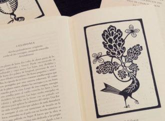 Plantas coronadas: sobre una novela de Diego S. Lombardi