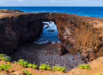 La isla de los sentidos, Tenerife