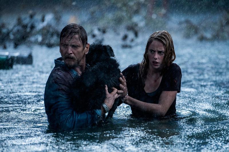 Infierno bajo el agua (Alexandre Aja, 2019). Cine fantástico y de terror