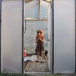 Spaces #3 : el proyecto de cuarentena del TIFF
